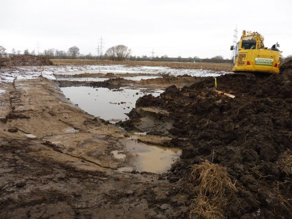 Bauarbeiten am Teich im Januar 2019